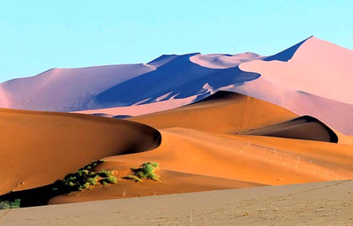 namibia experience safaris