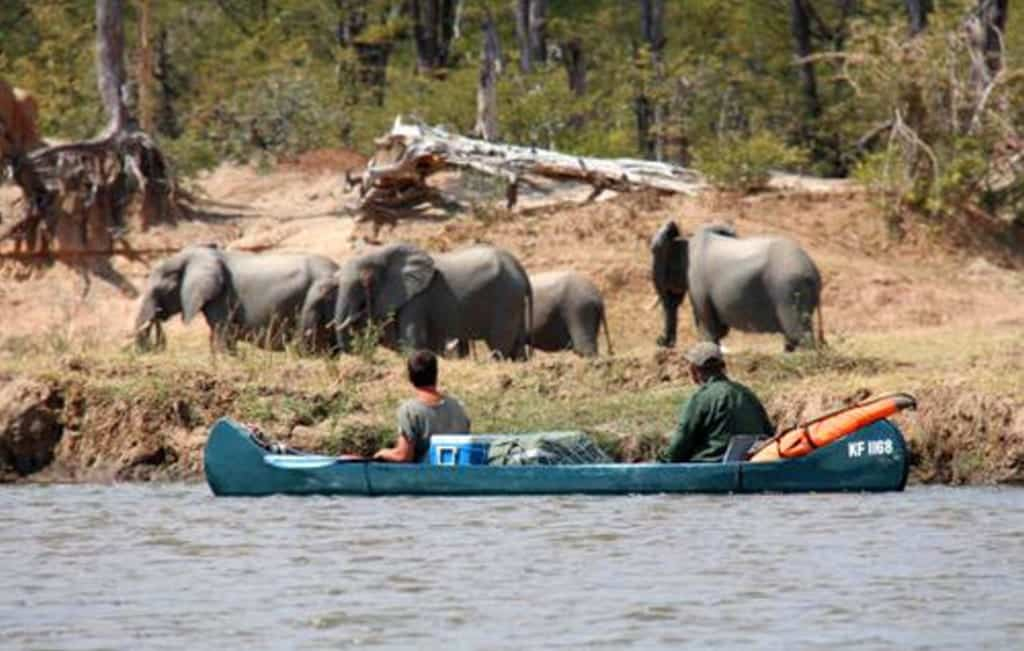 mana pools canoe safari