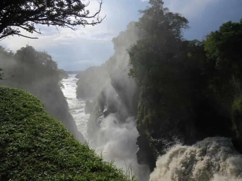 murchinson falls africa