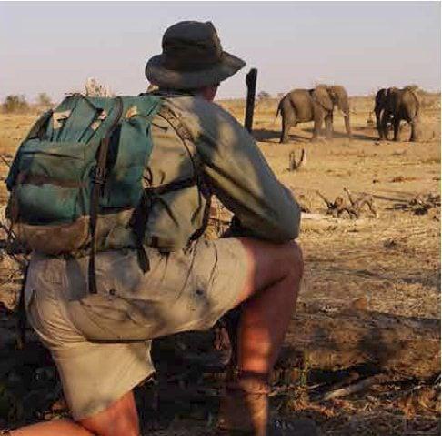 zimbabwe camping safari