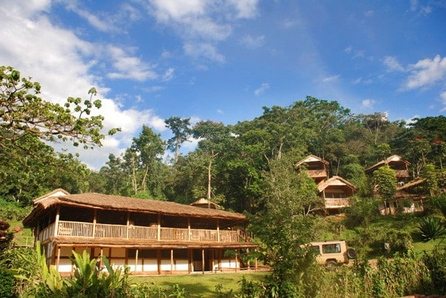 buhoma lodge uganda