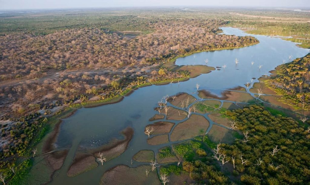 hydroelectric dam threatens tanzania's largest game reserve