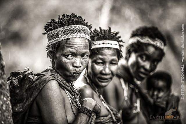 botswana culture wildlife