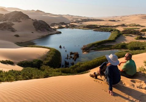 Skeleton coast Safari