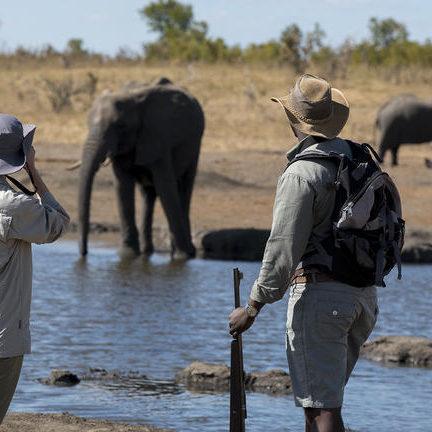 somalisa_expeditions073